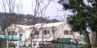 20110215073327.jpg