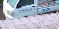 20110325060240.jpg